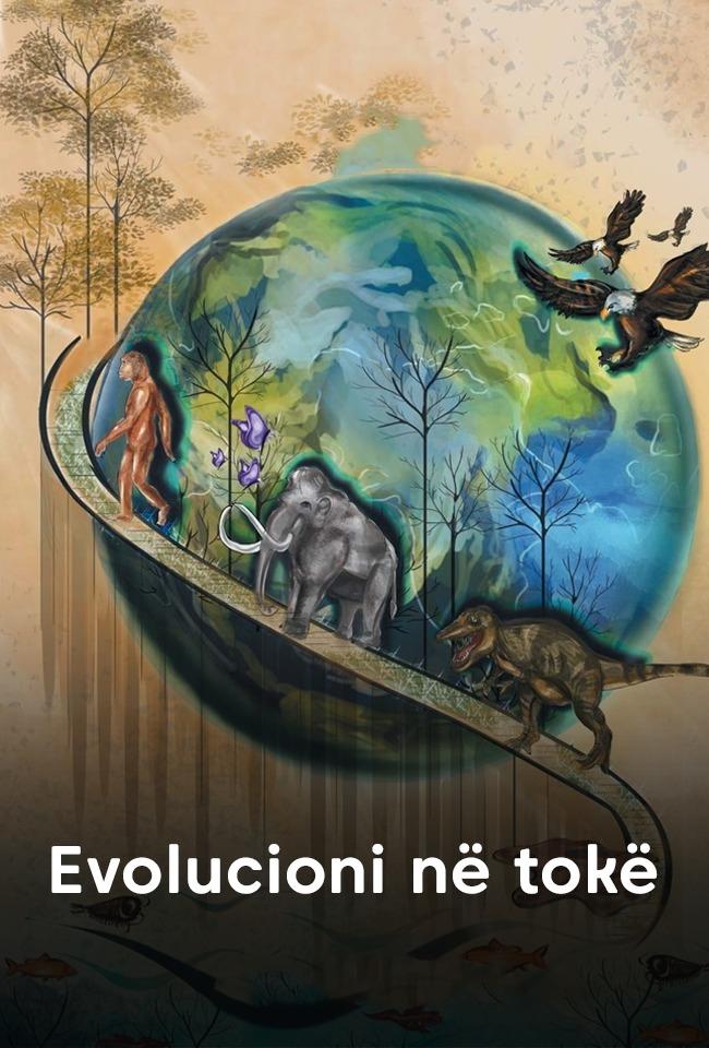 Evolucioni në tokë