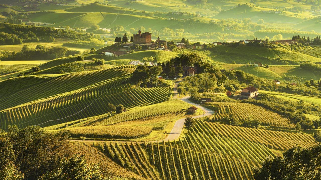 Shkenca dhe verërat, një pak i ri