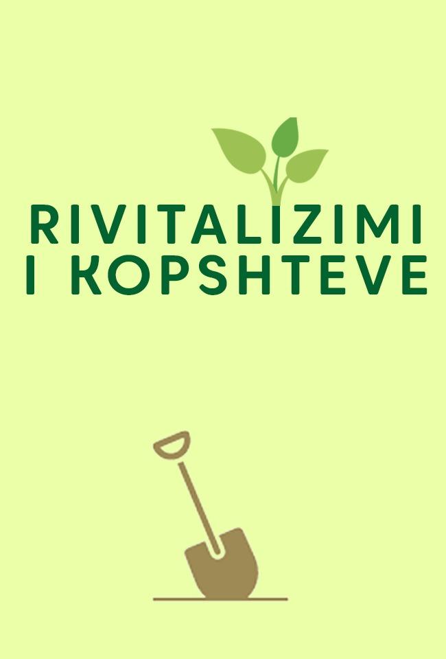 Rivitalizimi i kopshteve