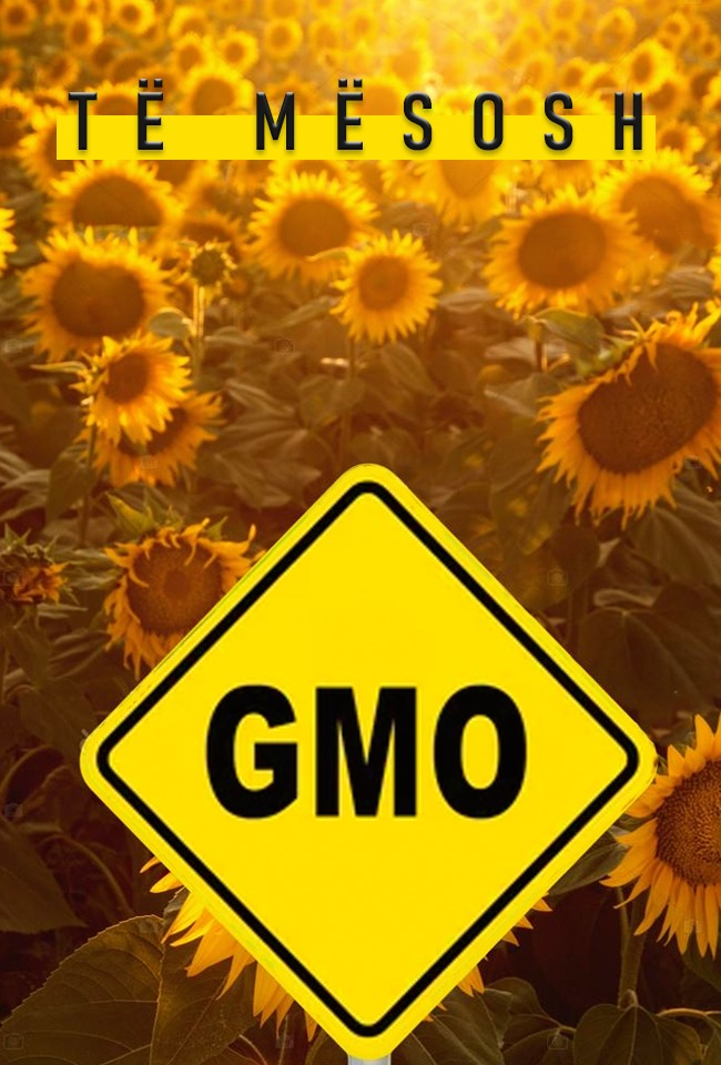 Të mësosh GMO