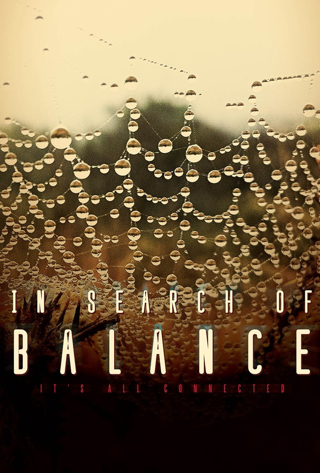 Në kërkim të ekuilibrit